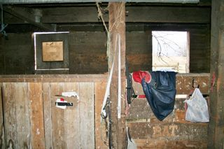 """Photo 18: 41666 DYKE Road in Mission: Dewdney Deroche House for sale in """"Deroche"""" : MLS®# R2142227"""