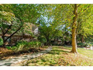 "Photo 25: 305 7426 138 Street in Surrey: East Newton Condo for sale in ""Glencoe Estates"" : MLS®# R2565557"