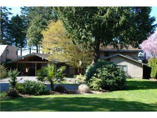 Photo 10: 731 ENGLISH BLUFF Road in Tsawwassen: English Bluff House for sale : MLS®# V1055207