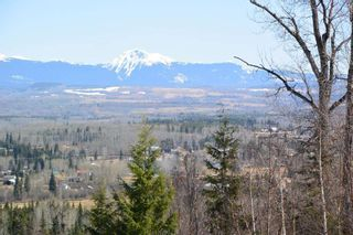Photo 4: 3160 BOYLE Road in Smithers: Smithers - Rural House for sale (Smithers And Area (Zone 54))  : MLS®# R2569460