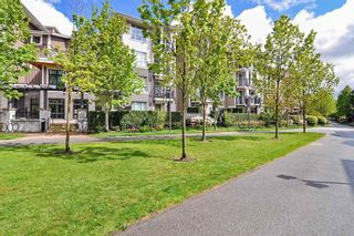 "Photo 20: 217 5788 SIDLEY Street in Burnaby: Metrotown Condo for sale in ""MACPHERSON WALK"" (Burnaby South)  : MLS®# R2379051"