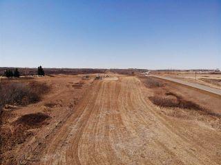 Photo 5: SE-36-42-10-W4 Bitzer Estates: Rural Flagstaff County Rural Land/Vacant Lot for sale : MLS®# E4237924