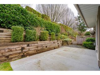 """Photo 28: 87 9025 216 Street in Langley: Walnut Grove Townhouse for sale in """"Coventry Woods"""" : MLS®# R2533100"""