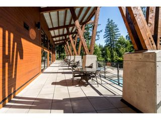 """Photo 33: 43573 RED HAWK Pass: Lindell Beach House for sale in """"The Cottages at Cultus Lake"""" (Cultus Lake)  : MLS®# R2477513"""