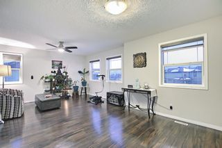 Photo 26: 207 Hawkmere View: Chestermere Detached for sale : MLS®# A1072249