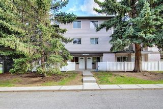 Photo 36: 1 3800 FONDA Way SE in Calgary: Forest Heights Row/Townhouse for sale : MLS®# C4300410