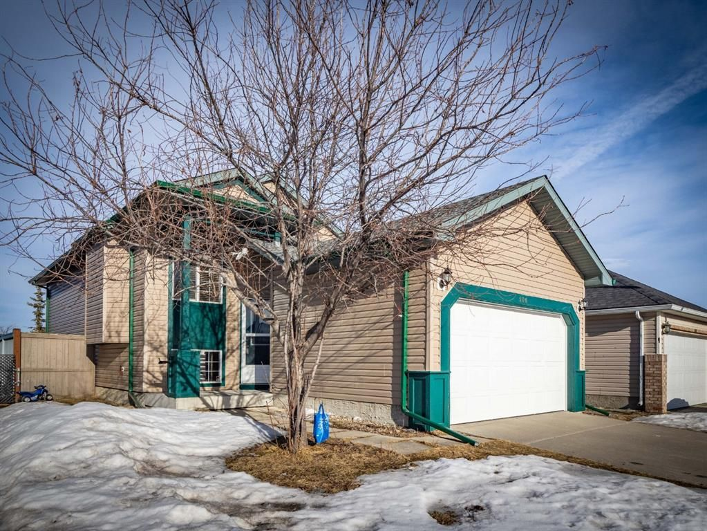 Main Photo: 206 Martinvalley Mews NE in Calgary: Martindale Detached for sale : MLS®# A1076021