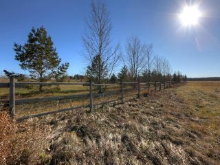 Photo 27: 53134 RR 225 Road: Rural Strathcona County Land Commercial for sale : MLS®# E4265746