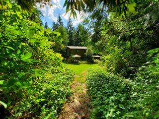 Photo 1: 12366 MCNUTT Road in Maple Ridge: Northeast House for sale : MLS®# R2618248