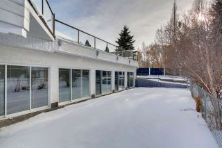 Photo 40: 63 BRYNMAUR Close: Rural Sturgeon County House for sale : MLS®# E4229586