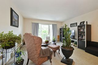 Photo 1: 204D 45655 MCINTOSH Drive in Chilliwack: Chilliwack W Young-Well Condo for sale : MLS®# R2611588