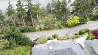 Photo 67: 3339 Stephenson Point Rd in : Na Departure Bay House for sale (Nanaimo)  : MLS®# 874392