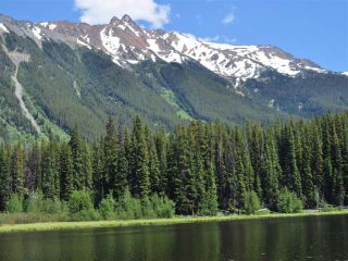 Photo 6: Mead Lake: Land for sale (Whistler)