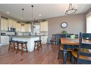 Photo 18: 2008 MERLOT Blvd in Abbotsford: Home for sale : MLS®# F1421188