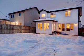 Photo 28: 136 CHAPALINA Crescent SE in Calgary: Chaparral House for sale : MLS®# C4165478