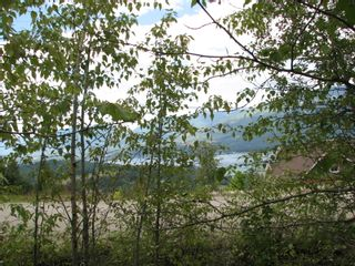 Photo 5: Lot 22 Ridge Road: Eagle Bay Land Only for sale (Shuswap)  : MLS®# 10167444
