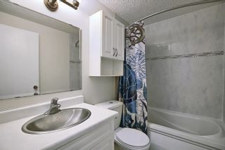 Photo 28: 8421 MILL WOODS Road in Edmonton: Zone 29 House for sale : MLS®# E4249016