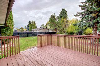 Photo 19: 15223 61 Street in Edmonton: Zone 02 House for sale : MLS®# E4264134