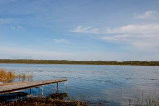Photo 42: 5126 Shedden Drive: Rural Lac Ste. Anne County House for sale : MLS®# E4263575