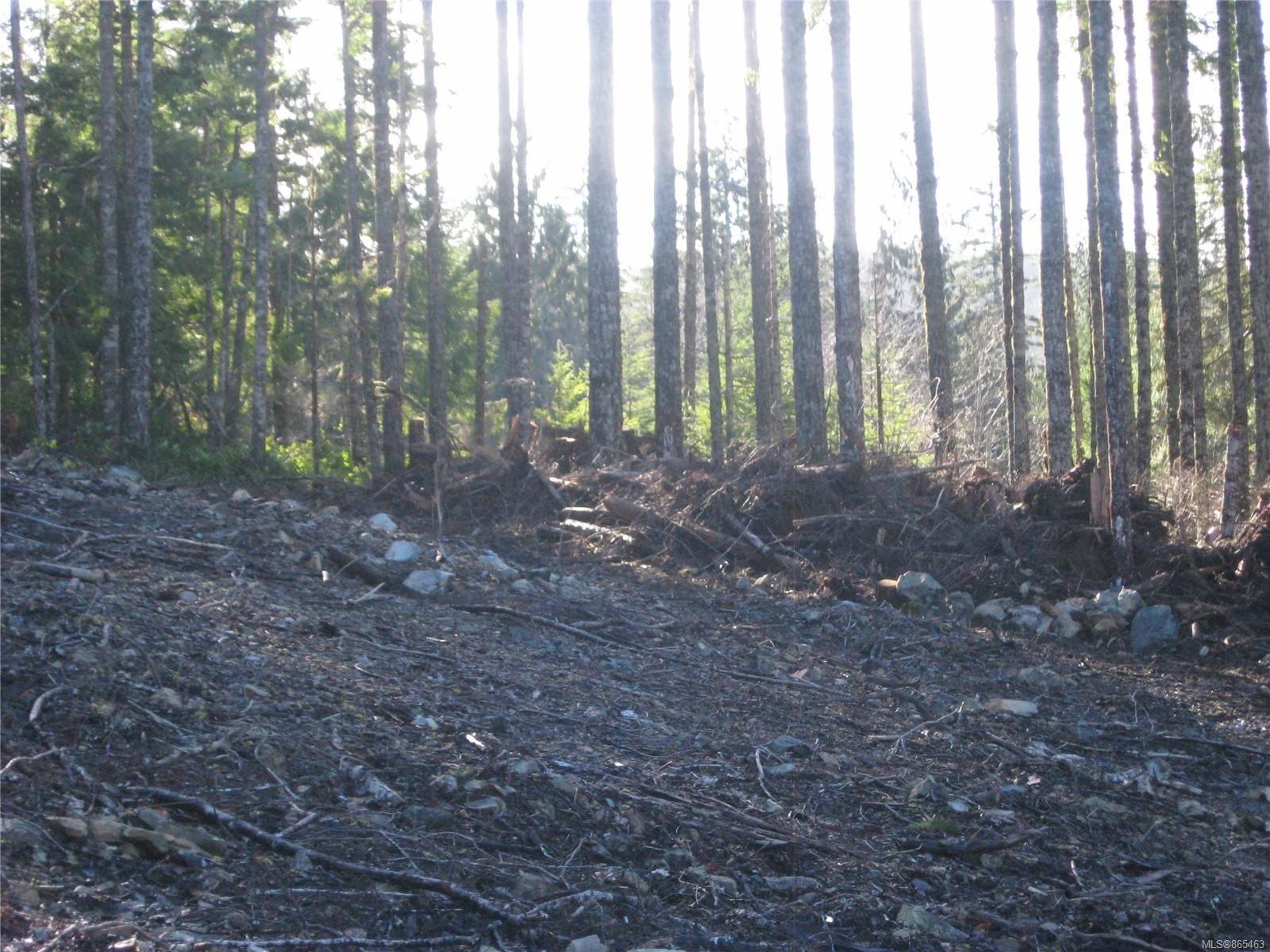 Photo 12: Photos: 1230 Cottonwood Rd in : NI Kelsey Bay/Sayward Land for sale (North Island)  : MLS®# 865463
