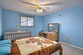 Photo 24: 110 11 Dover Point SE in Calgary: Dover Apartment for sale : MLS®# A1096781