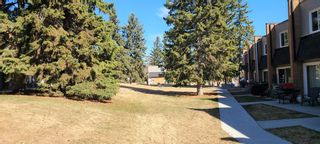 Photo 23: 302 3522 44 Street SW in Calgary: Glenbrook Apartment for sale : MLS®# A1122030