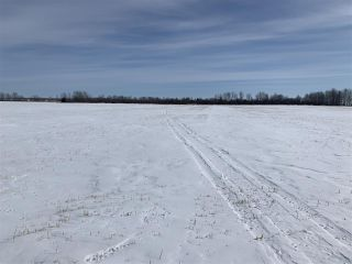 Photo 12: RR 25 HWY 661: Rural Westlock County Rural Land/Vacant Lot for sale : MLS®# E4236665