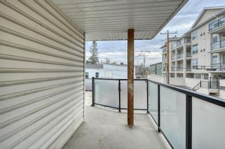 Photo 26: 302 112 34 Street NW in Calgary: Parkdale Apartment for sale : MLS®# A1152841