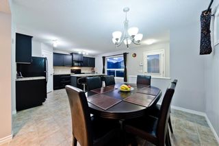 Photo 24: 169 SKYVIEW RANCH DR NE in Calgary: Skyview Ranch House for sale : MLS®# C4278111