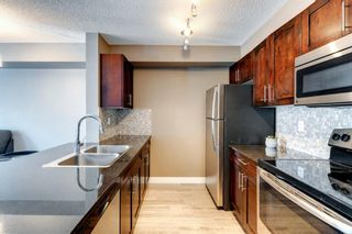 Photo 12: 4207 1317 27 Street SE in Calgary: Albert Park/Radisson Heights Apartment for sale : MLS®# A1126561