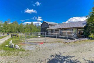 Photo 38: 12598 248 Street in Maple Ridge: Websters Corners House for sale : MLS®# R2479389