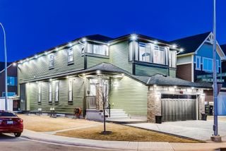 Main Photo: 102 Saddlelake Way NE in Calgary: Saddle Ridge Detached for sale : MLS®# A1092455