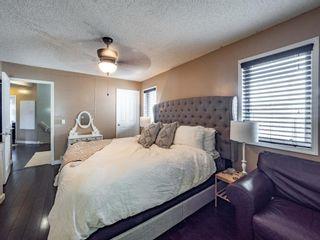 Photo 11: 251 Prestwick Landing SE in Calgary: McKenzie Towne Detached for sale : MLS®# A1095129