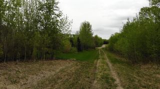 Photo 10: Viewmar Drive: Rural Ponoka County Land for sale : MLS®# C4288523