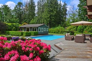 Photo 19: 21985 86A Avenue in Langley: Fort Langley House for sale : MLS®# R2538321