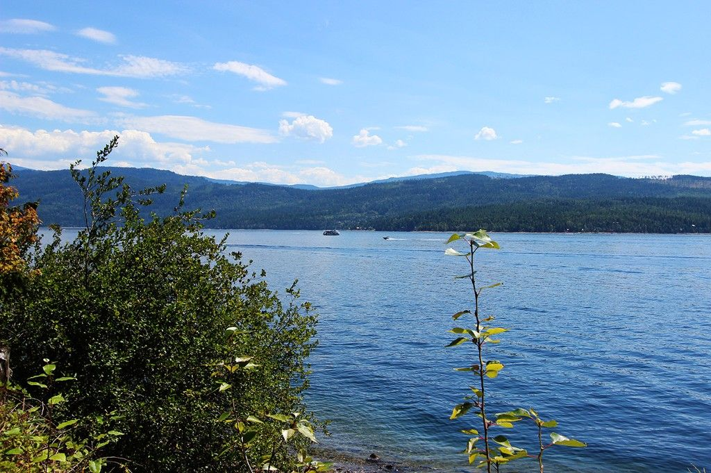 Photo 48: Photos: 8079 Squilax Anglemont Highway: St. Ives House for sale (North Shuswap)  : MLS®# 10179329