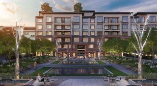 "Photo 19: 209 22638 119 Avenue in Maple Ridge: East Central Condo for sale in ""BRICKWATER THE VILLAGE"" : MLS®# R2603277"