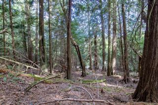 Photo 7: 8817 Canal Rd in : GI Pender Island Land for sale (Gulf Islands)  : MLS®# 874545