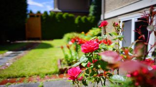 Photo 30: 13546 14 AVENUE in Surrey: Crescent Bch Ocean Pk. House for sale (South Surrey White Rock)  : MLS®# R2472072