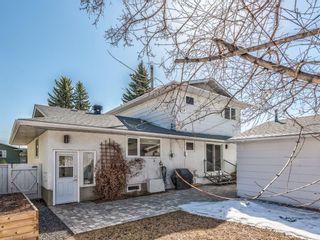 Photo 43: 10811 Maplebend Drive SE in Calgary: Maple Ridge Detached for sale : MLS®# A1115294