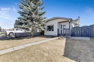 Main Photo: 16 Erin Meadows Court SE in Calgary: Erin Woods Detached for sale : MLS®# A1094958