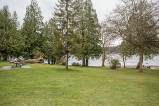 Photo 28: 851 PLYMOUTH Drive in North Vancouver: Windsor Park NV House for sale : MLS®# R2448395