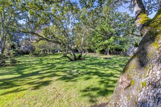 Photo 56: 3393 Upper Terrace Rd in : OB Uplands House for sale (Oak Bay)  : MLS®# 857501