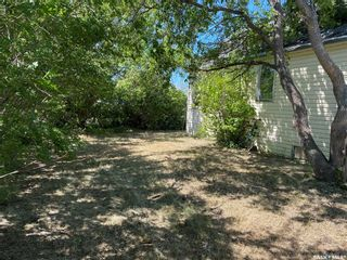 Photo 3: Dafoe Acreage in Big Quill: Residential for sale (Big Quill Rm No. 308)  : MLS®# SK864565