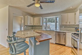 Photo 13: 10843 Mapleshire Crescent SE in Calgary: Maple Ridge Detached for sale : MLS®# A1099704