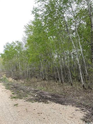 Photo 6: E Second Street South in Endeavour: Lot/Land for sale : MLS®# SK856274