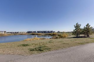 Photo 36: 236 Hillcrest Drive SW: Airdrie Detached for sale : MLS®# A1153882