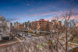 Photo 4: 213 527 15 Avenue SW in Calgary: Beltline Apartment for sale : MLS®# A1102451