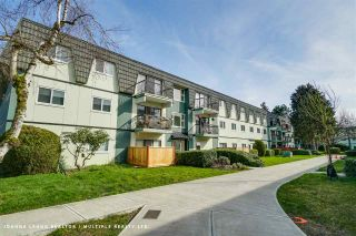 Main Photo: 176 8160 WILLIAMS Road in Richmond: South Arm Condo for sale : MLS®# R2556071