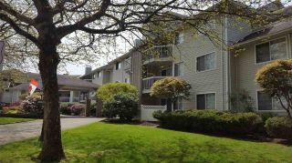 Photo 4: 202 22514 116 AVENUE in Maple Ridge: East Central Condo for sale : MLS®# R2162618